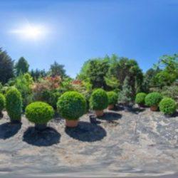 Das Gartenparadies